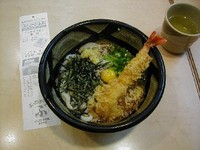 P110udon